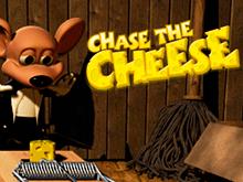 Играть в игровые аппараты Преследуй Сыр