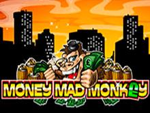 Игровой автомат Помешанная на Деньгах Обезьянка